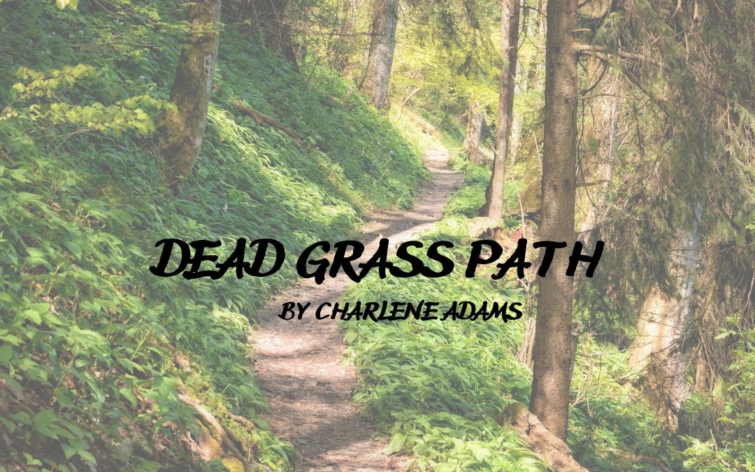 Dead Grass Path
